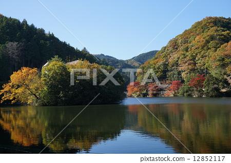 Autumn lake 12852117