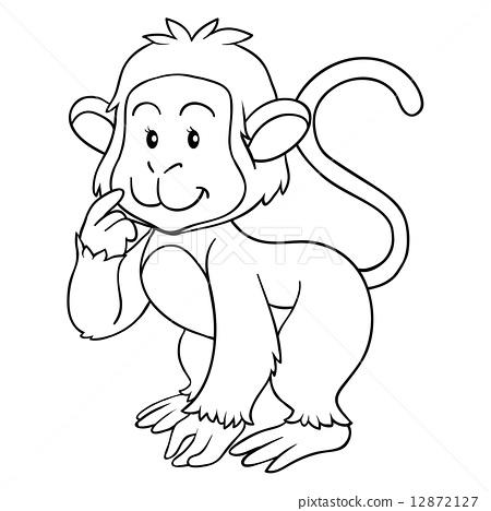 Coloring book (monkey) 12872127