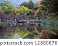 Hikone castle 12880676