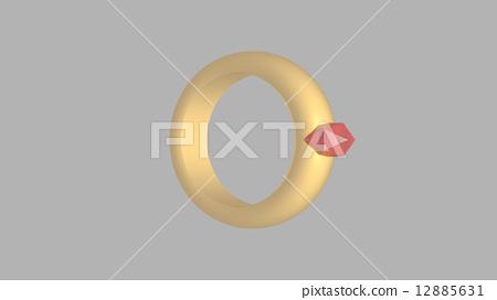 Ring 1 12885631