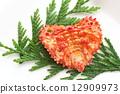 相扑选手的围裙 煮熟的蟹 褌 12909973