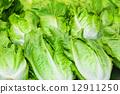 cabbage vegetable salad 12911250