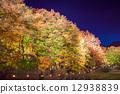 ฤดูใบไม้ร่วง,ประภาคาร,ภาพถ่ายอาคารช่วงค่ำ 12938839