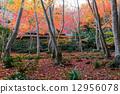 giou, temple, autumn 12956078