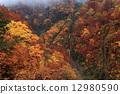 ใบไม้เปลี่ยนสีในฤดูใบไม้ร่วง Oedagiri Valley Somen Falls 12980590