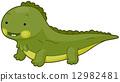 Iguana 12982481