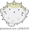 Puffer Fish 12982678