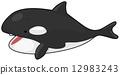 Killer Whale 12983243