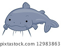 Cute Catfish 12983863
