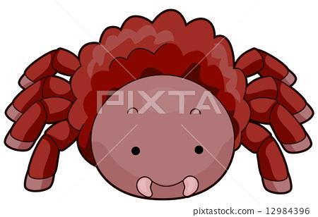 Tarantula 12984396