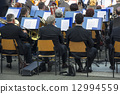 Symphonic Orchestra 12994559