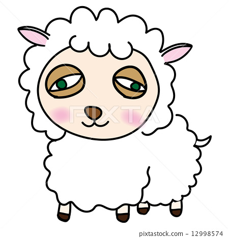 Loose sheep 12998574