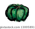 南瓜 甜蜜 粗糙的 13005891
