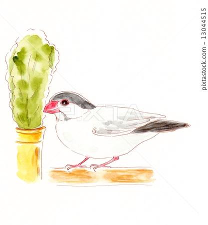 Cherry Blossoms Bird 13044515