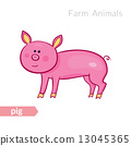 cute, pink, pig 13045365
