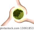 地球儀 生態系統 綠色 13061853