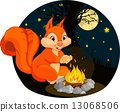 Squirrel campfire 13068506