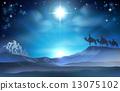 出生 明智 圣诞节 13075102