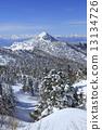 覆有霜的樹 冰霜覆蓋的樹木 山 13134726