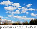 구름, 하늘, 푸른 13154531