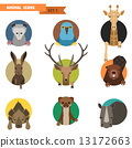 Animal avatars. Vector Illustration 13172663