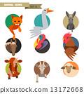 Farm animals avatars 13172668