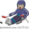 Sledge Hockey 13177131