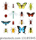 Insects icons set 13185945