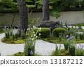 七月庐山(Rosan)菊花寺 - 京都花园之美 -  13187212