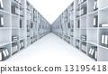 cabinet, shelf, book 13195418