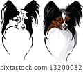 dog breed papillon 13200082