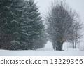 snowstorm, snowy, dance 13229366