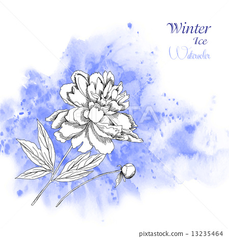 Background  with watercolors and flowers-07 13235464