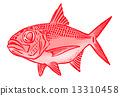 漂亮的目鯛 魚 公海 13310458