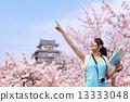 ต้นไม้,นักท่องเที่ยว,ซากุระ 13333048