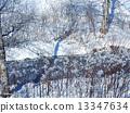Foggy ice 13347634