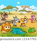 Set of funny wild animals in the nature 13347765