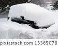 Snow Storm 13365079