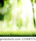 草地 绿色 青草 13368773