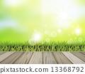 牧场 草地 绿色 13368792