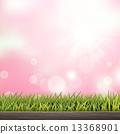 模糊 草地 绿色 13368901