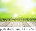 抽象 草地 绿色 13369243