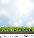 草地 绿色 青草 13369622