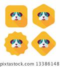 개, 강아지, 애완동물 13386148