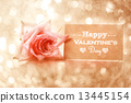 valentine, valentines day, rose 13445154