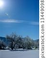 백마, 설경, 눈 경치 13449098