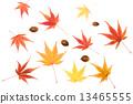 Colors of autumn 13465555