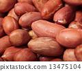 Peanut 13475104