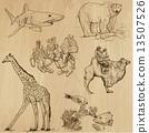 pack, hand, drawn 13507526