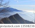 sequoia, sequoia national park, nature 13508236